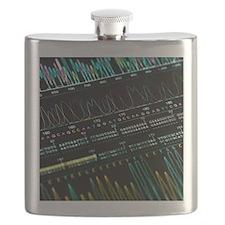 DNA analysis - Flask