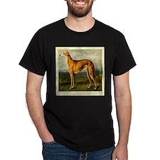 Greyhound 1880 Digitally Rema T-Shirt