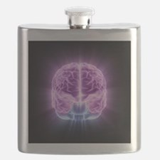 Human brain,computer artwork - Flask