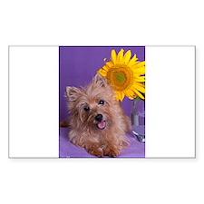 Sunflower Girl Decal