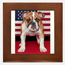 All American Bulldog Framed Tile