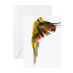 my parrot can talk Greeting Cards (Pk of 10)