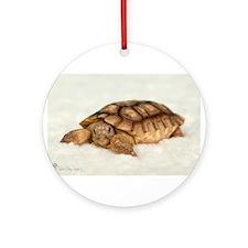 Tortoise Time! Ornament (Round)