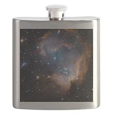 Starbirth region NGC 602 - Flask