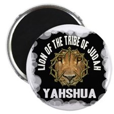 Yahshua Lion Magnet