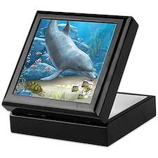 The World Of The Dolphin Keepsake Box