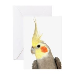 Cockatiel 3 Steve Duncan Greeting Card