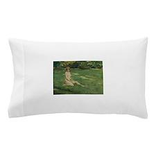60.png Pillow Case