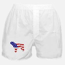 Spanish Water Dog Boxer Shorts