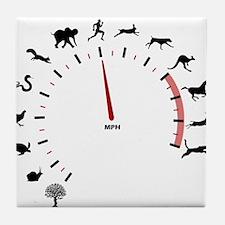animal speed Tile Coaster