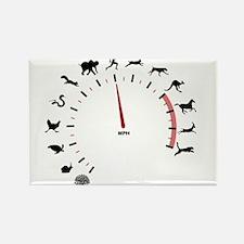 animal speed Rectangle Magnet