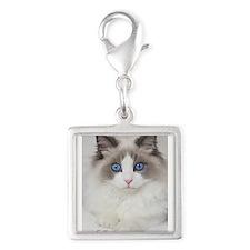 Ragdoll Kitten Silver Square Charm