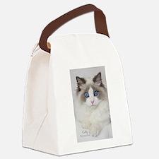 Ragdoll Kitten Canvas Lunch Bag