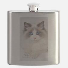 Ragdoll Kitten Flask