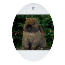 Christmas Bunny Ornament (Oval)