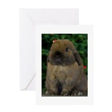 Christmas Bunny Greeting Card