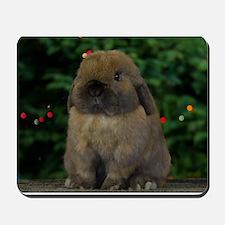 Christmas Bunny Mousepad