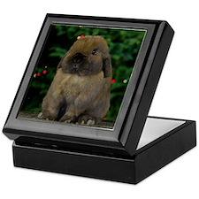 Christmas Bunny Keepsake Box