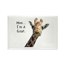 Moo Giraffe Goat Rectangle Magnet (10 pack)