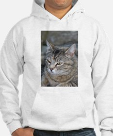 Cat mean kitty thinking Hoodie