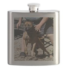 DamienGoing Flask