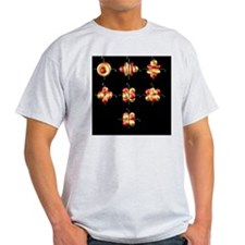4f electron orbitals, cubic set - T-Shirt