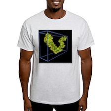 Spheroidene molecule, electron density - T-Shirt
