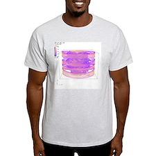 Turbulent gas flow simulation - T-Shirt
