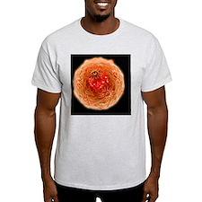 Human papilloma virus - T-Shirt
