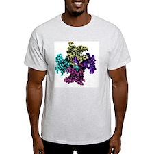 Mitochondrial RNA binding proteins - T-Shirt