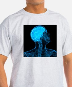 Head anatomy, artwork - T-Shirt