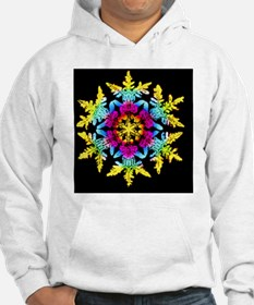 Coloured computer-enhanced image of a sno - Hoodie