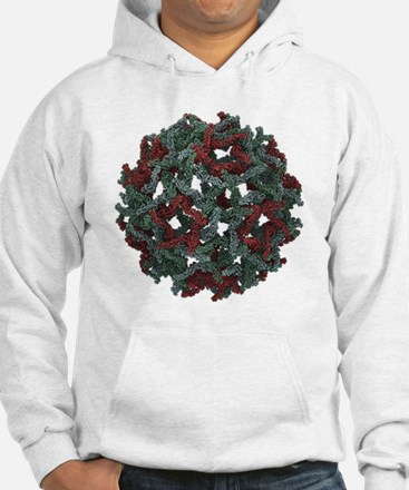 Immature West Nile virus, molecular model - Hoodie