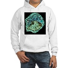 Endocrine cell, TEM - Hoodie