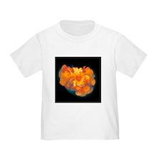 Supernova explosion - T