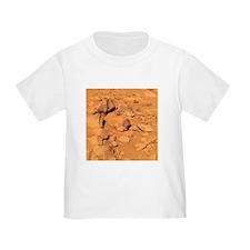 Toltecs, volcanic rocks, Mars - T