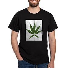 THE 420 MARIJUANA Black T-Shirt