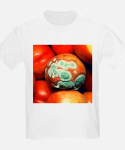 Nectarine covered in fungal growth - T-Shirt