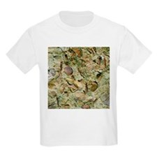 A mixed assemblage of fossils - T-Shirt