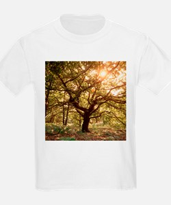 Tree in spring - T-Shirt