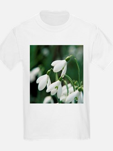 Snowdrop flowers - T-Shirt