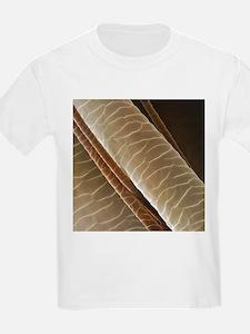 Reindeer hair, SEM - T-Shirt