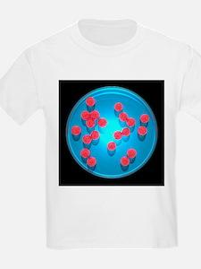 Spherical bacteria, artwork - T-Shirt