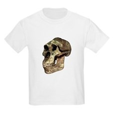 Australopithecus boisei skull - T-Shirt