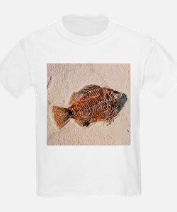 Fossilised fish, Priscacara serata - T-Shirt