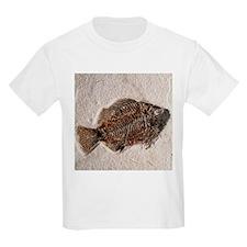 Fossilised fish, Priscacara serata - T-Shirt