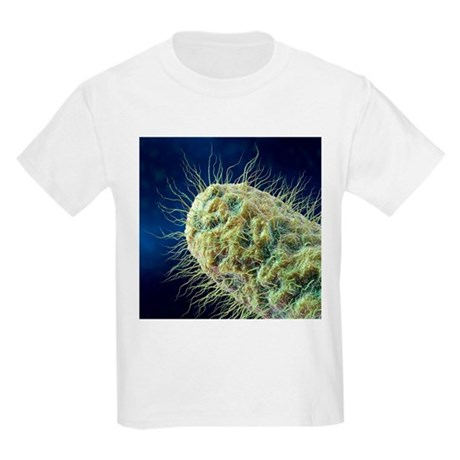 Rod-shaped bacteria, artwork - Kids Light T-Shirt