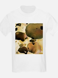 Tempur memory foam, SEM - T-Shirt