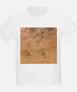 Tenoumer Crater, satellite image - T-Shirt
