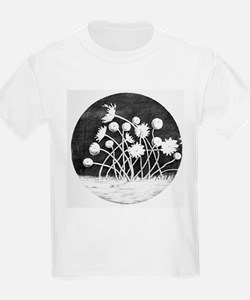 Zoophytes, historical diagram - T-Shirt